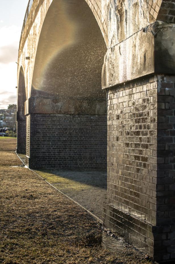 Zen Photo Walk 1000px-11