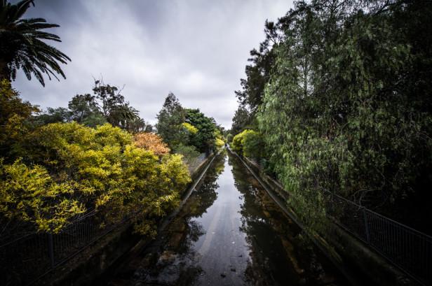 Zen Photo Walk 1000px-7
