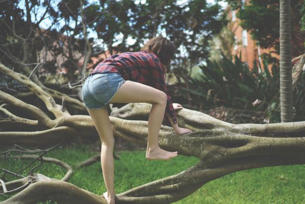 bri_justinfox_tree_climb