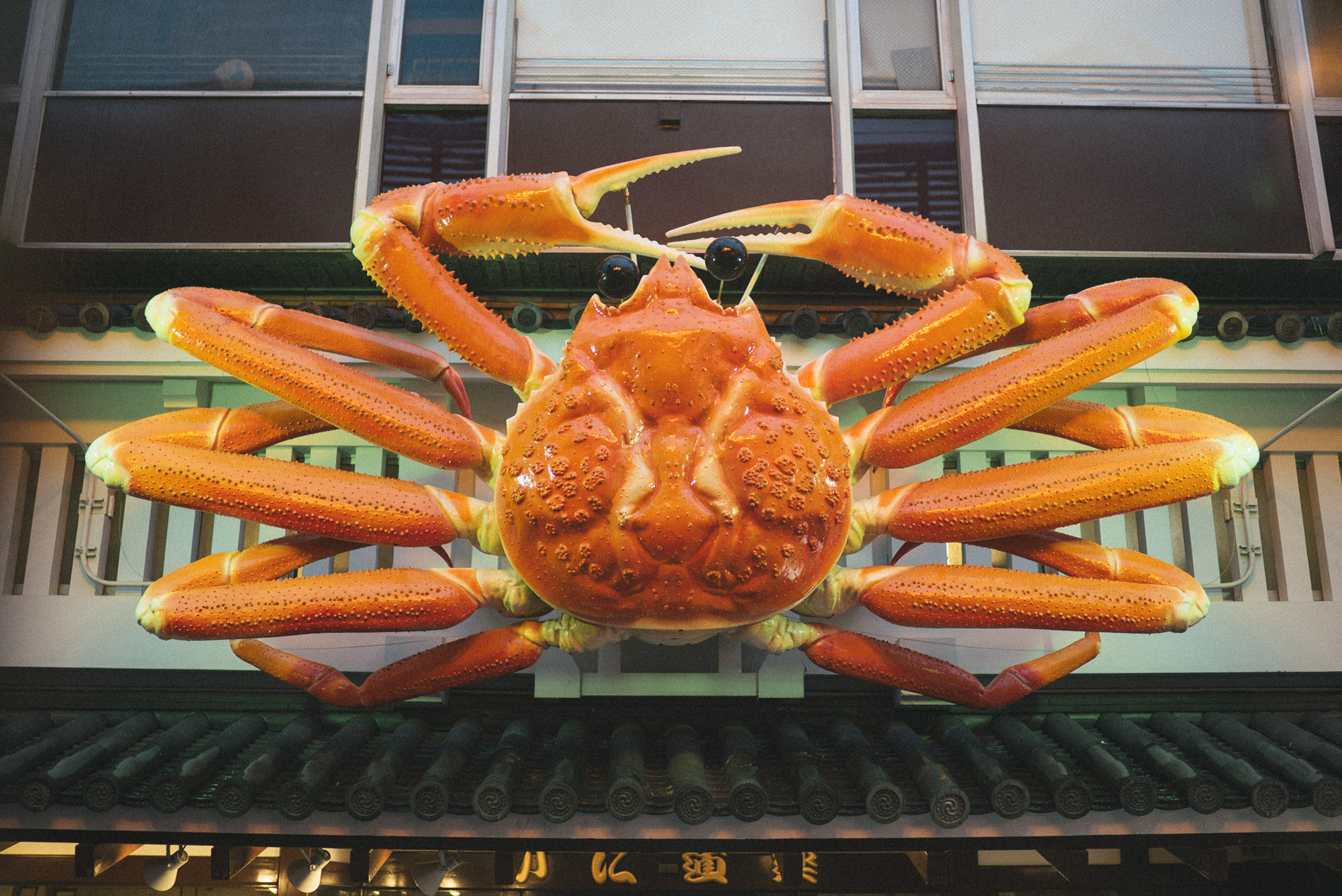 Lots and lots of paper mache signs, some, like this crab were animated (which brings me back to seeing one of these signs animating for the very first time when I was a little boy in Japan).